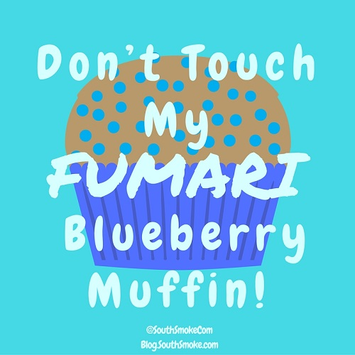 Dont touch my fumari blueberry muffin