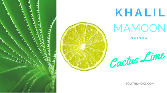 Khalil Mamoon Shisha Cactus Lime